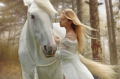 young successful model posing with her white stallion horse in forest