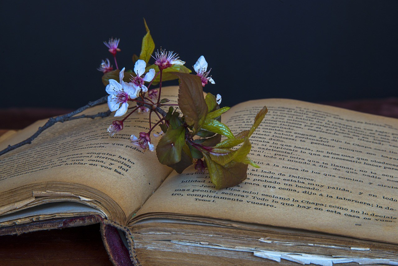 an antique open book on a table with cherry flowers on top